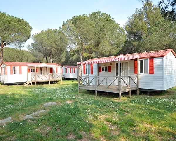 Studienreisen Ferienanlage Bi Village: Mobilhome