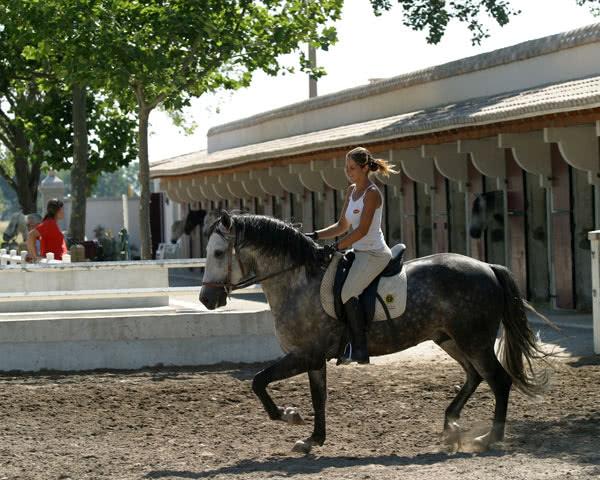 Schülerreise Ferienpark Camargue: Pferdestall