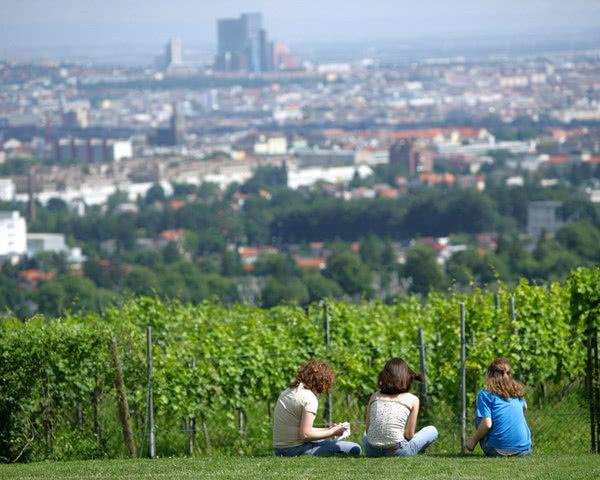 Studienreise Schlossherberge Wien- Panorama