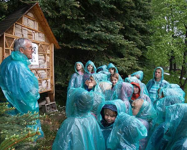 Jugendreise Grüne Schule grenzenlos: Wald