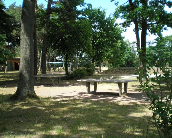 Abireisen Feriendorf Boltenhagen: Tischtennis