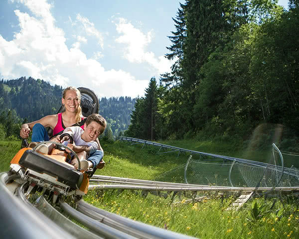 Schulfahrt Kolbensattel- Alpine Coaster
