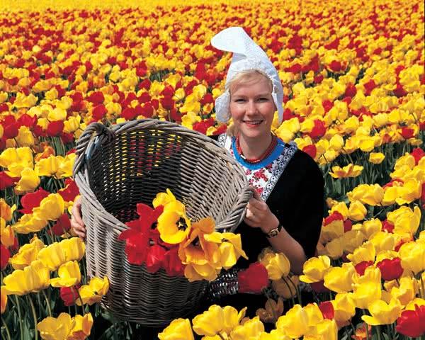 Das Beste aus Holland
