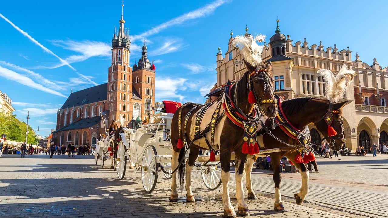 Pferdekutsche Krakau
