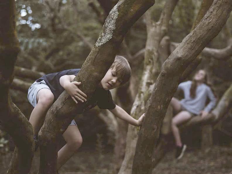 Ein Grundschüler klettert auf einen Baum